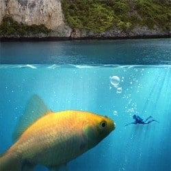 Create an Underwater Scene of a Giant Goldfish in Photoshop
