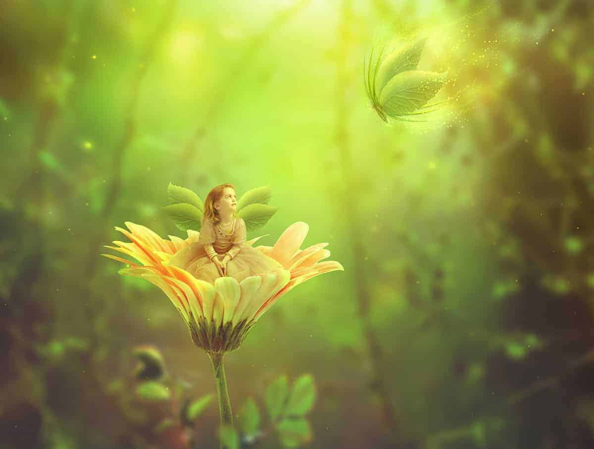 How to Create a Fantasy Fairy Scene Photo Manipulation with Adobe Photoshop