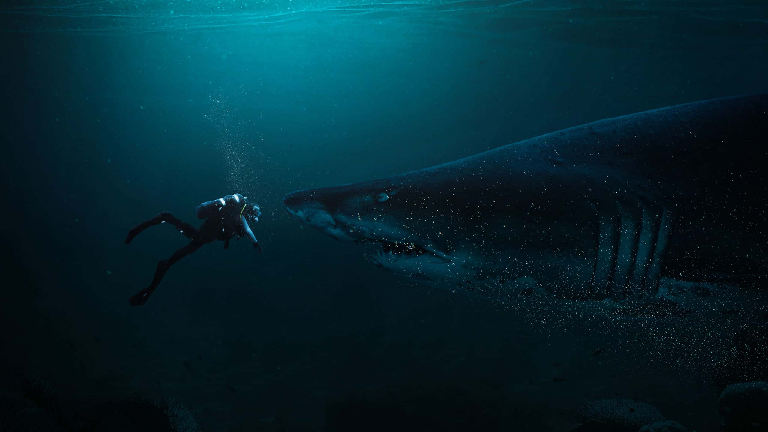 Create a Photomanipulation of a Shark and a Diver